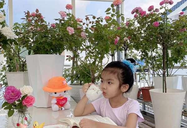 [Kinh Nghiệm] Cách trồng hoa Hồng tại nhà, trên sân thượng 17