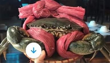 Cảm giác bị lừa khi mua hải sản Vi_Seafood