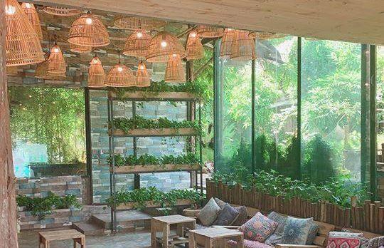 [Review] - Cafe Cây Vườn Lá Cành, 181 phố Vệ Hồ - Xuân La 60