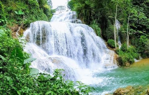 Du Lịch khu bảo tồn thiên nhiên Ngọc Sơn - Ngổ Luông, xã Tự Do, huyện Lạc Sơn, Hòa Bình 22