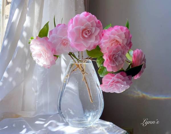 Giới thiệu về Hoa Trà - Trên thế giới có khoản 300 loài Camellia 6
