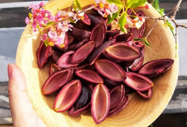 Món ăn từ quả Trám đen : Xôi trám & Trám nhồi thịt 2