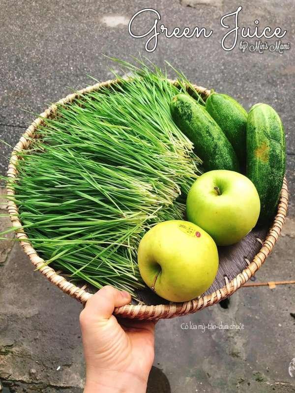 Tìm hiểu về NƯỚC ÉP trái cây - Tổng hơp 59 công thức nước ép hoa quả 19