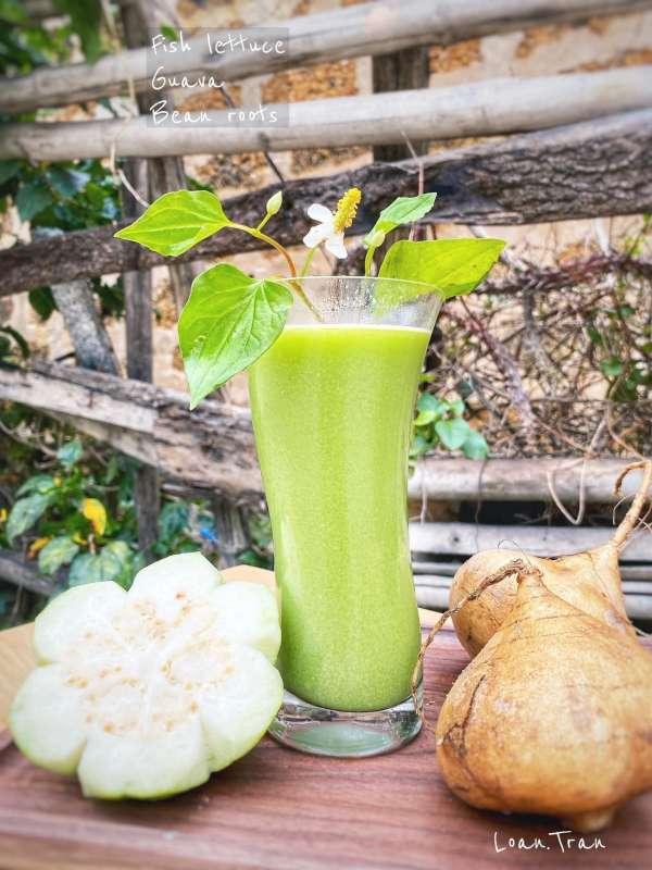 Tìm hiểu về NƯỚC ÉP trái cây - Tổng hơp 59 công thức nước ép hoa quả 4