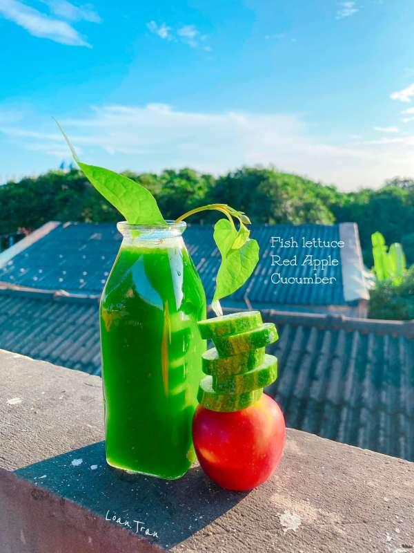 Tìm hiểu về NƯỚC ÉP trái cây - Tổng hơp 59 công thức nước ép hoa quả 28