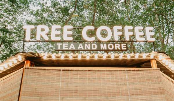 """[Review Cafe Nghĩa Tân] - Khu rừng thu nhỏ """"Treeland Coffee"""" 9"""