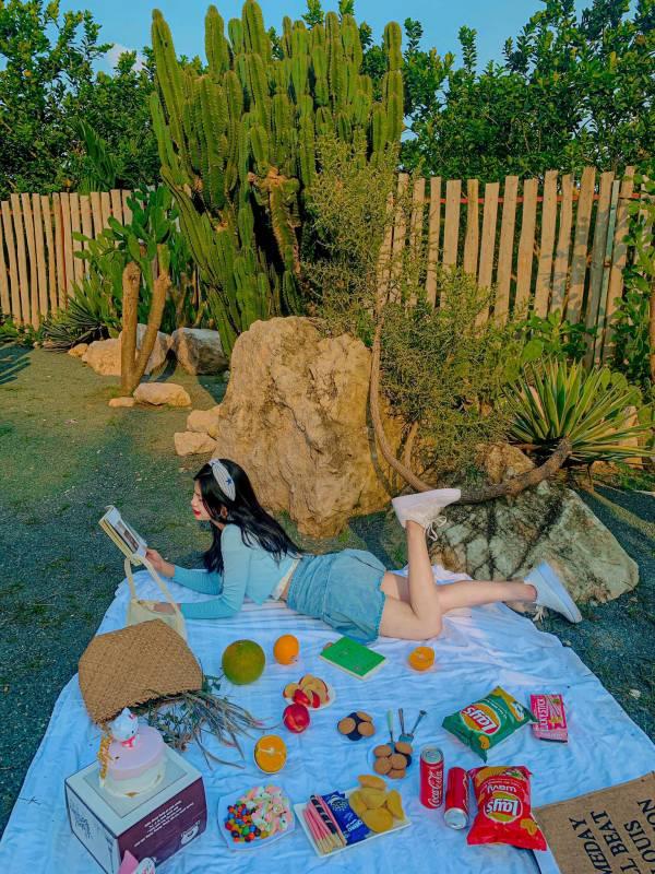 [Review] - Khu Vườn Cactus, Vườn Cacti Zone - Chân cầu Nhật Tân 4