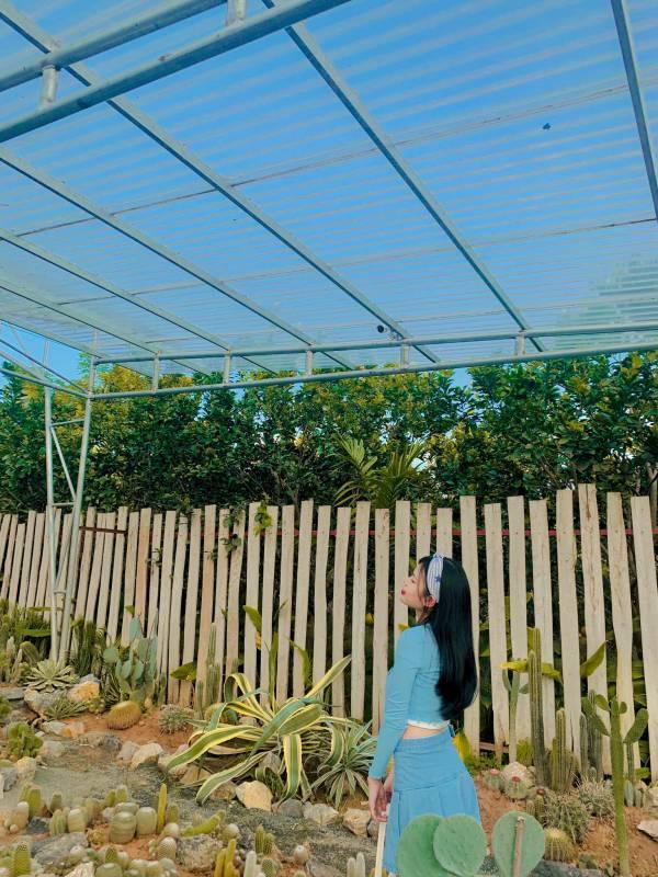 [Review] - Khu Vườn Cactus, Vườn Cacti Zone - Chân cầu Nhật Tân 3