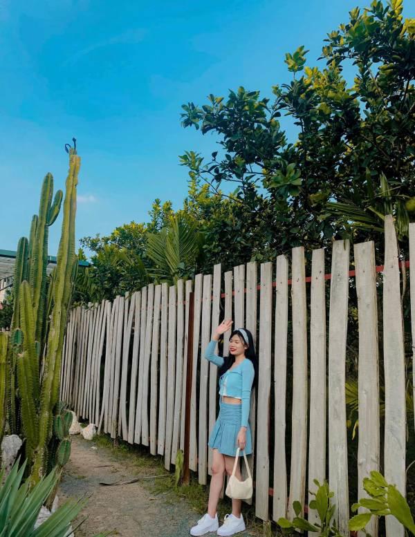 [Review] - Khu Vườn Cactus, Vườn Cacti Zone - Chân cầu Nhật Tân 2