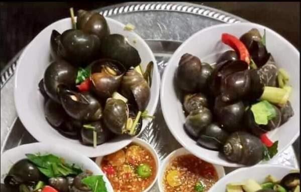 [Review] - Foodtour Vinh city, Đặc sản ốc xào, 74 Đinh công tráng 62