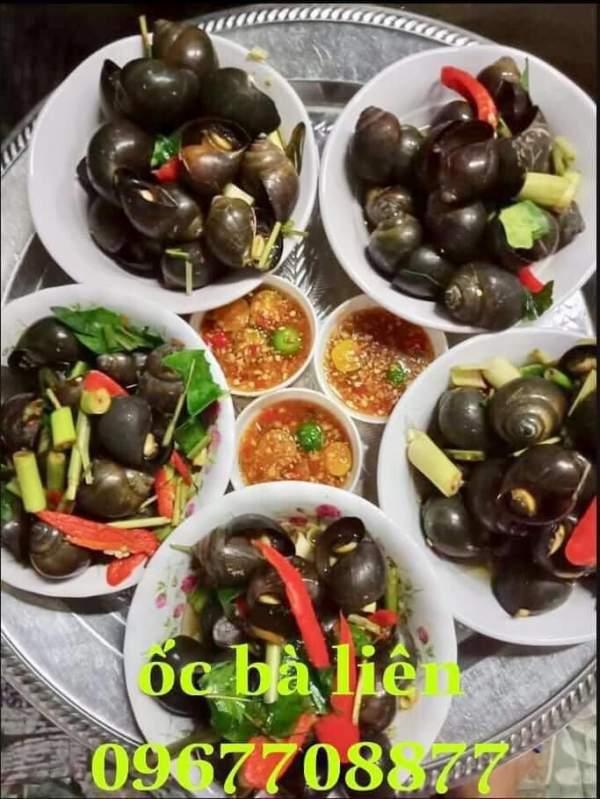 [Review] - Foodtour Vinh city, Đặc sản ốc xào, 74 Đinh công tráng 4