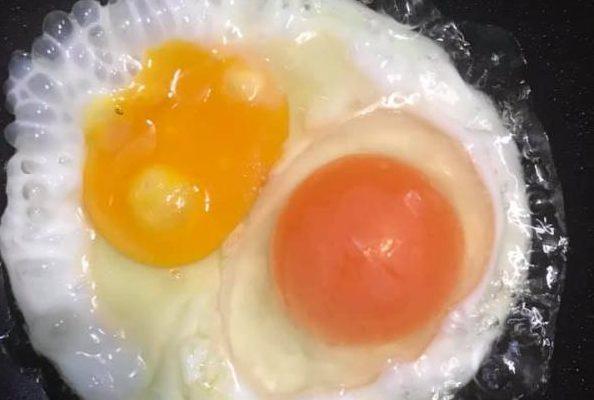 [Review] - Sự khác biệt giữa trứng gà ta ăn lúa và trứng gà nuôi công nghiệp 10