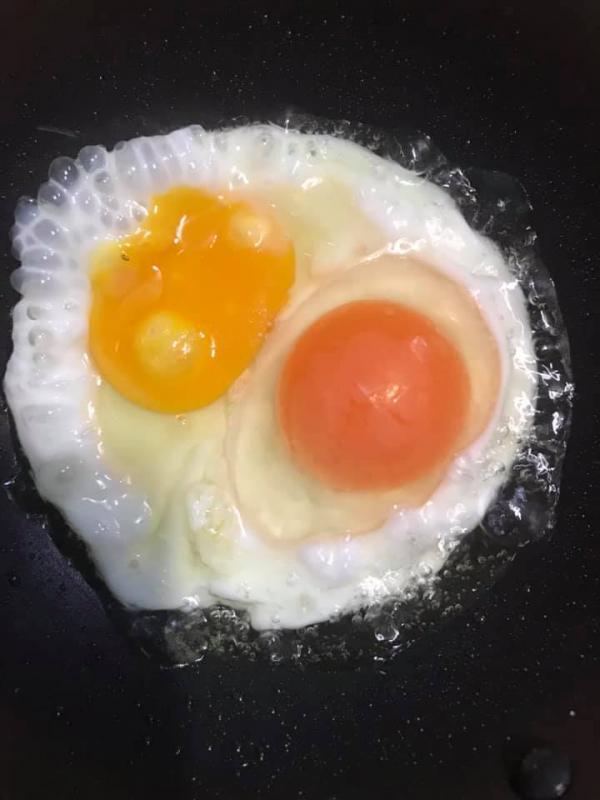 [Review] - Sự khác biệt giữa trứng gà ta ăn lúa và trứng gà nuôi công nghiệp 2