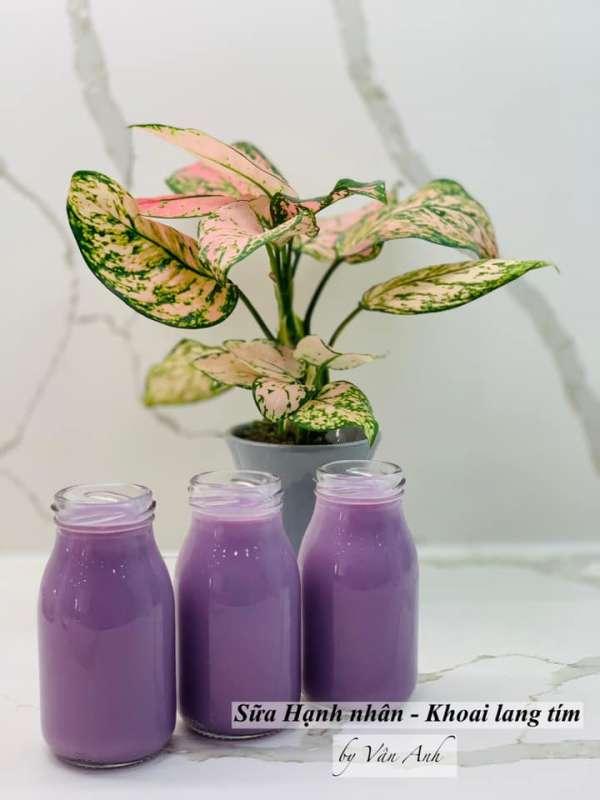 Sữa Hạt là gì ? Cách chọn Hạt, Cách nấu Sữa Hạt, Siêu tác dụng của Sữa Hạt 12