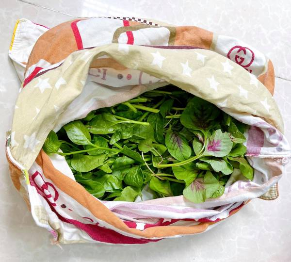 Cách bảo quản Rau Củ Quả tươi lâu 1 tháng - Bí quyết bảo quản thực phẩm lâu 2